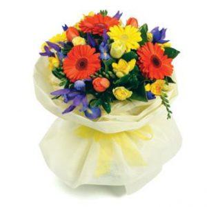 SPRINGY-flower