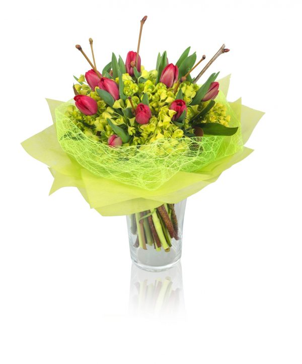 VIBRANT-TULIP-flower