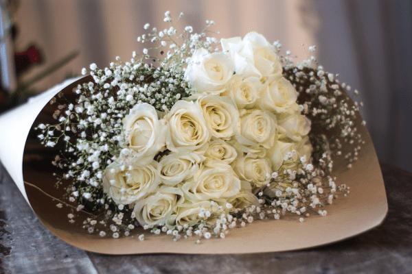 PREMIUM-WHITE-ROSE-flower